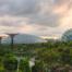Singapore Supertrees